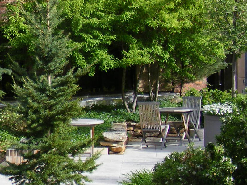 Healing Environment Planning and Design - Portland, Oregon