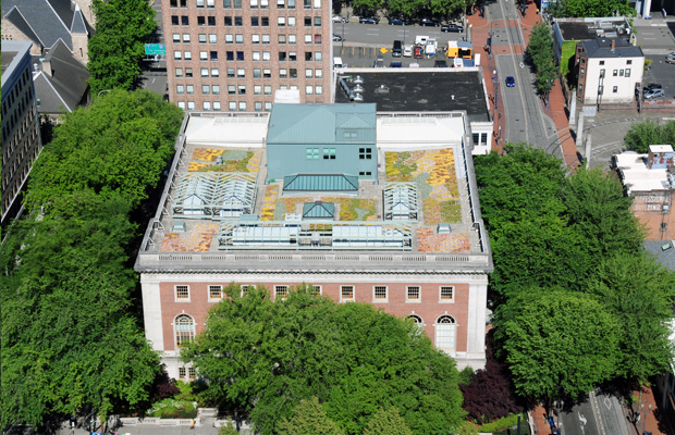 multnomah-county-library-greenroof1