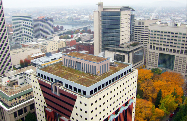portland-building-green-roof1