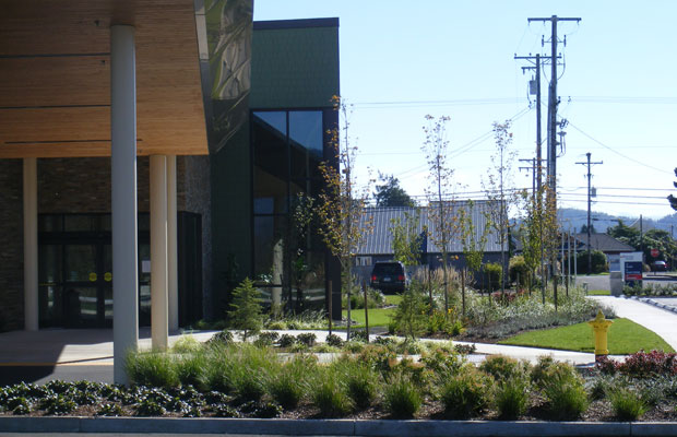 Tillamook-Urgent-Care-Entry-Garden-1042