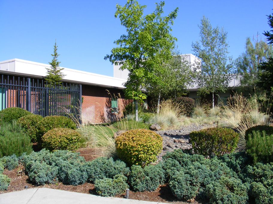 Mountain View Hospital01