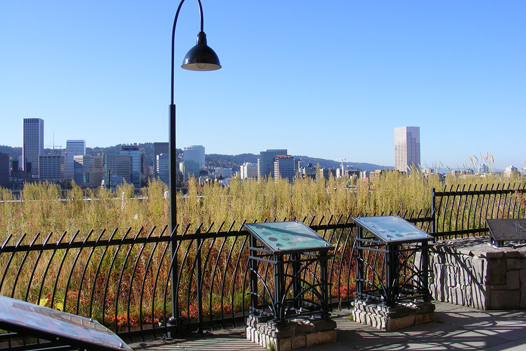 Multnomah-county-bld-green-roof02